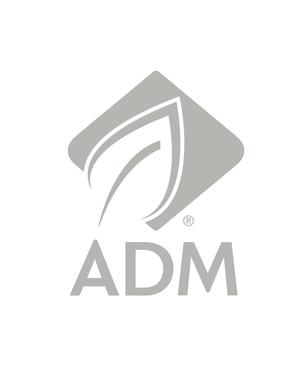 Adm_-_copia